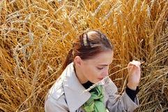 Oreilles de femme et de blé Photographie stock libre de droits