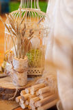 Oreilles de grain dans le paysage Photo stock