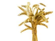 Oreilles de l'élevage de seigle et de blé Images stock