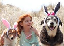 Oreilles de lapins de Pâques Photographie stock libre de droits