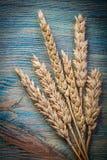 Oreilles de seigle de blé sur la nourriture en bois de panneau de vintage et le concept de boissons Photo libre de droits