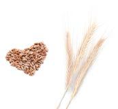 Oreilles et coeur de blés Photographie stock