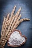 Oreilles et piala de Rye avec de la farine Image stock