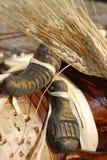 Oreilles et texture de pierres Photo stock
