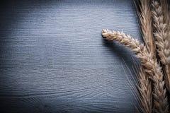 Oreilles horizontales de vue de blé sur le conseil en bois Photographie stock