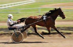 Orel, Russia - April 30, 2017: Harness racing. Sorrel racing hor Stock Photo