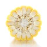 Orelha de milho  Foto de Stock Royalty Free