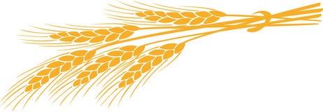 Orelhas Imagem de Stock Royalty Free