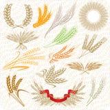 Orelhas creativas do trigo ilustração stock