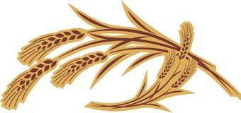 Orelhas da grão ilustração royalty free