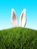 Orelhas de coelho na grama ilustração stock