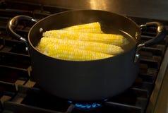 Orelhas de milho Imagem de Stock