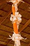 Orelhas de milho Imagens de Stock Royalty Free