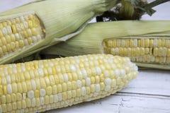 Orelhas de milho frescas Foto de Stock Royalty Free