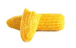 Orelhas de milho no fundo branco foto de stock