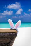 Orelhas do coelho na cadeira do sol na praia tropical Imagens de Stock