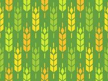 Orelhas do trigo, do Rye e da cevada Imagens de Stock