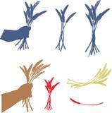 Orelhas do trigo na mão Fotos de Stock