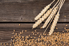 Orelhas do trigo na tabela de madeira fotos de stock
