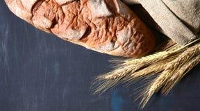 Orelhas duras rústicas do pão e do trigo em uma obscuridade Imagem de Stock Royalty Free