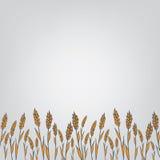 Orelhas genéticas da alteração ilustração stock