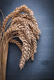 Orelhas verticais do centeio da versão na placa de madeira do vintage Imagem de Stock