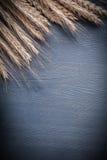 Orelhas verticais do copyspace da versão do trigo na placa de madeira Imagem de Stock Royalty Free