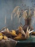 Oren en graan Stock Afbeelding