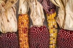 Oren van decoratief graan op hout Stock Foto