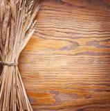 Oren van tarwe. stock afbeelding