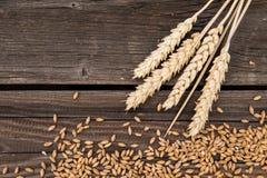 Oren van tarwe op houten lijst stock foto's