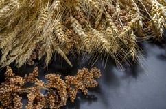Oren van Tarwe, rogge, gierstpshenici in boeket wordt geassembleerd dat stock fotografie