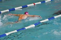Orenbourg, Russie - 13 novembre 2016 : Les filles concurrencent dans le style de papillon de natation Photographie stock libre de droits