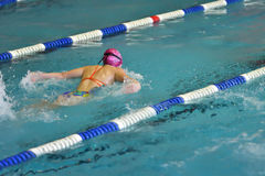 Orenburg, Rússia - 13 de novembro de 2016: As meninas competem no estilo da borboleta da natação Imagens de Stock Royalty Free