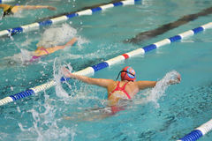 Orenburg, Rússia - 13 de novembro de 2016: As meninas competem no estilo da borboleta da natação Imagem de Stock