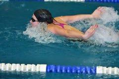 Orenburg, Rússia - 13 de novembro de 2016: As meninas competem no estilo da borboleta da natação Fotos de Stock Royalty Free