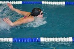 Orenburg, Rússia - 13 de novembro de 2016: As meninas competem no estilo da borboleta da natação Foto de Stock