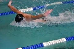 Orenburg, Rússia - 13 de novembro de 2016: Os meninos competem no estilo da borboleta da natação Fotografia de Stock Royalty Free