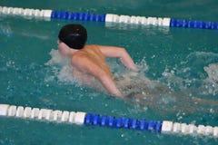Orenburg, Rússia - 13 de novembro de 2016: Os meninos competem no estilo da borboleta da natação Foto de Stock Royalty Free