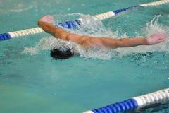 Orenburg, Rússia - 13 de novembro de 2016: Os meninos competem no estilo da borboleta da natação Imagens de Stock Royalty Free