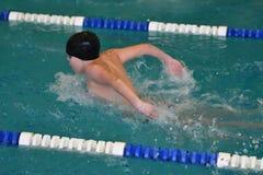Orenburg, Rússia - 13 de novembro de 2016: Os meninos competem no estilo da borboleta da natação Foto de Stock