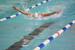 Orenburg, Rússia - 13 de novembro de 2016: Os meninos competem no estilo da borboleta da natação Imagem de Stock