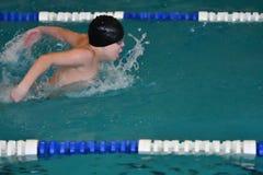 Orenburg, Rússia - 13 de novembro de 2016: Os meninos competem no estilo da borboleta da natação Fotografia de Stock