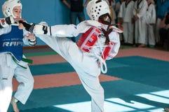 Orenburg, Rússia - 23 04 2016: Taekwondo compete meninas Foto de Stock Royalty Free