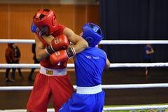 Orenburg Rosja, rok, - Stycznia 21, 2017: Chłopiec boksery współzawodniczą Obrazy Stock