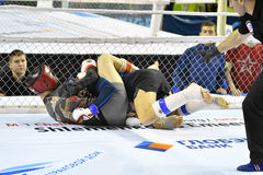 Orenburg, Rusland - Februari 18, het jaar van 2017: De vechters concurreren in gemengde vechtsporten Stock Afbeeldingen