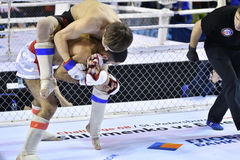 Orenburg, Rusland - Februari 18, het jaar van 2017: De vechters concurreren in gemengde vechtsporten Royalty-vrije Stock Afbeelding