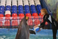 Orenburg, Rusland - November 8, het jaar van 2017: toon dolfijnen in Dolphinarium Stock Fotografie