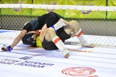 Orenburg, Russia - 18 febbraio 2017 anno: I combattenti fanno concorrenza in arti marziali miste Immagini Stock Libere da Diritti