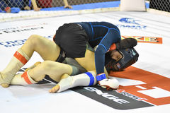 Orenburg, Russia - February 18, 2017 year: The fighters compete in mixed martial arts Stock Images